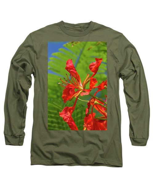 Royal Poinciana Flower Long Sleeve T-Shirt