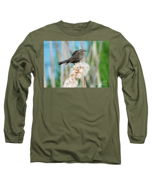 Ruffled Feathers Long Sleeve T-Shirt by Mike Dawson