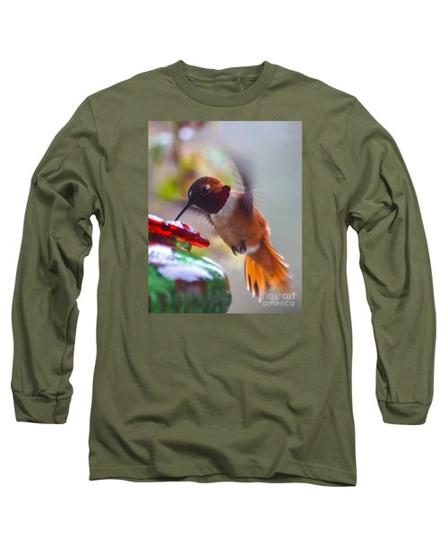 Rufus Hummingbird At The Feeder Long Sleeve T-Shirt