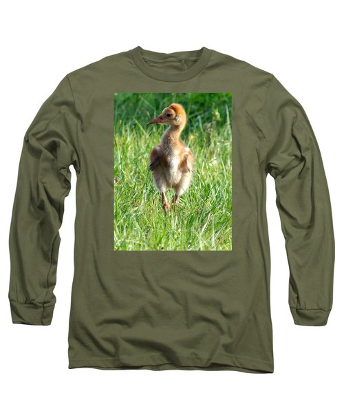 Long Sleeve T-Shirt featuring the photograph Sandhill Crane Chick 085  by Chris Mercer