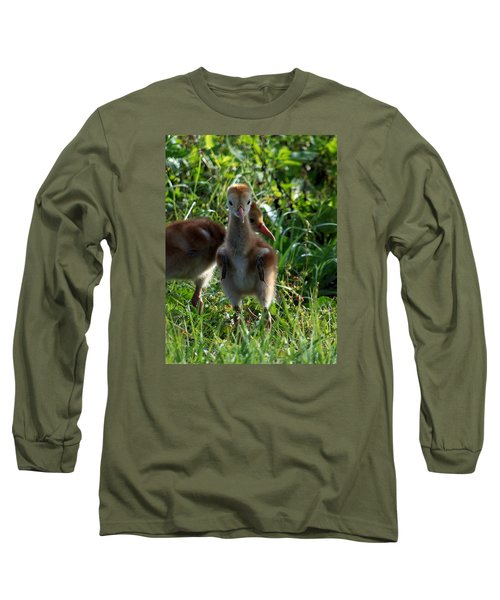 Long Sleeve T-Shirt featuring the photograph Sandhill Crane Chick 086  by Chris Mercer