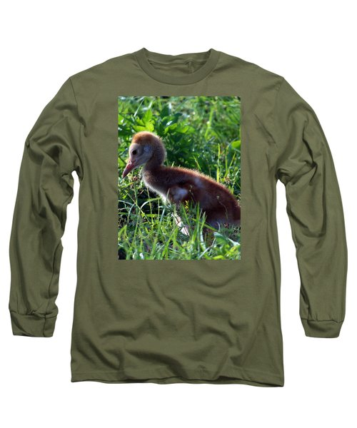 Long Sleeve T-Shirt featuring the photograph Sandhill Crane Chick 087  by Chris Mercer