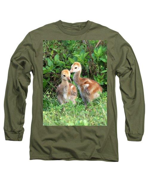 Long Sleeve T-Shirt featuring the photograph Sandhill Crane Chicks 001 by Chris Mercer