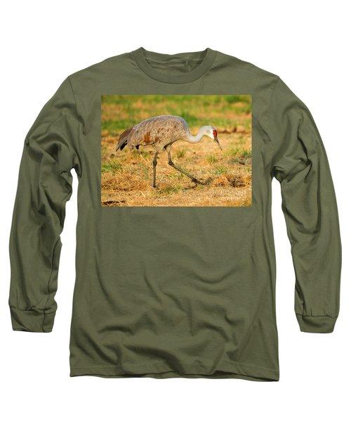 Sandhill Crane Grazing Long Sleeve T-Shirt