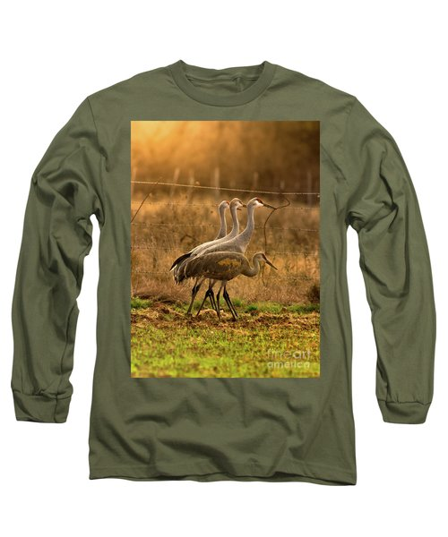 Sandhill Cranes Texas Fence-line Long Sleeve T-Shirt by Robert Frederick