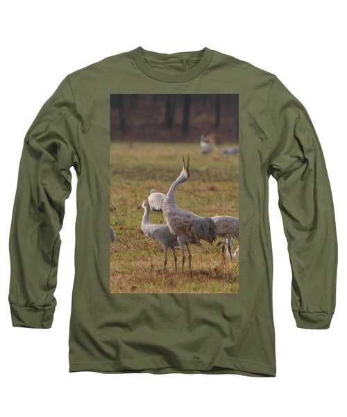 Sandhill Delight Long Sleeve T-Shirt by Shari Jardina