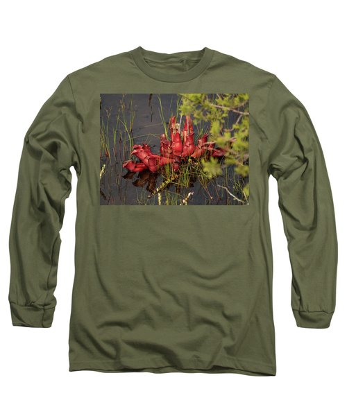 Long Sleeve T-Shirt featuring the photograph Sarracenia Bug Bat Plant by Louis Dallara