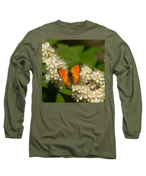 Long Sleeve T-Shirt featuring the photograph Scarce Copper 2 by Jouko Lehto