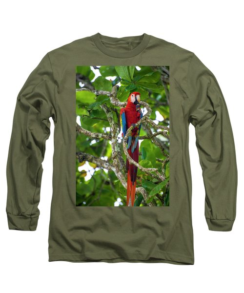 Long Sleeve T-Shirt featuring the photograph Scarlet Macaw by David Morefield