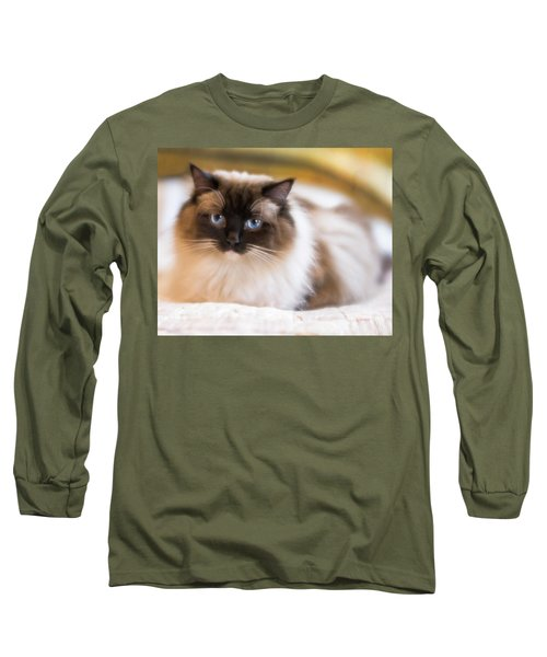 Seal Point Bicolor Ragdoll Cat Long Sleeve T-Shirt