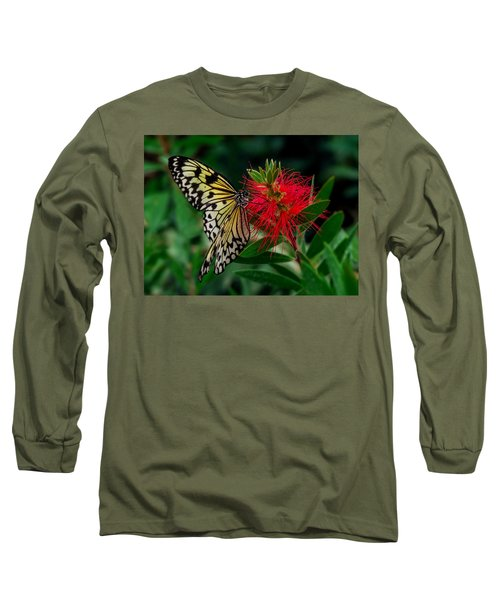 Long Sleeve T-Shirt featuring the photograph Searching For Nectar by Nick Bywater