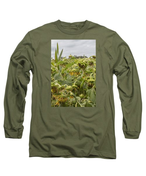 Season's End Long Sleeve T-Shirt by Arlene Carmel