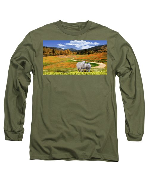 Sheep And Road Ver 3 Long Sleeve T-Shirt
