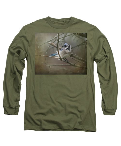 Shelter From The Wind Long Sleeve T-Shirt