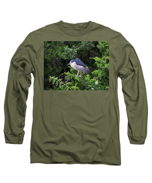 Shore Bird Roosting In A Tree Long Sleeve T-Shirt