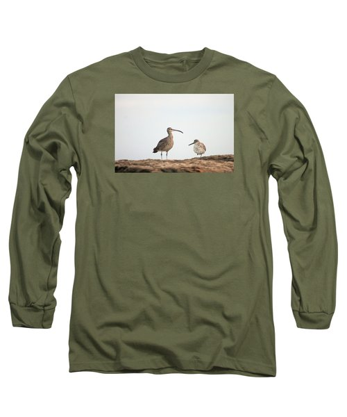 Shorebirds Of Windansea Beach Long Sleeve T-Shirt
