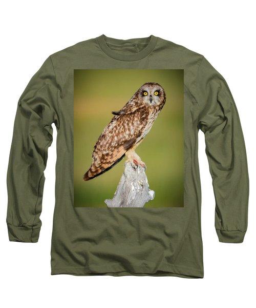 Short Eared Owl Long Sleeve T-Shirt