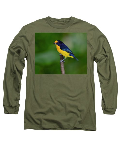 Short Round Long Sleeve T-Shirt by Tony Beck