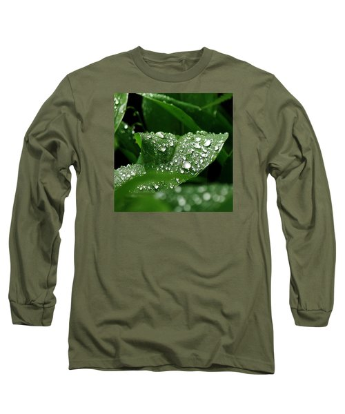 Silver Drops Of Spring Long Sleeve T-Shirt by Al Fritz