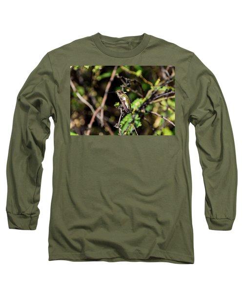 Sleepy Hummingbird Long Sleeve T-Shirt