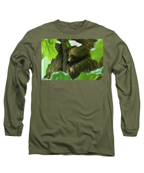 Sloth Sleeping Long Sleeve T-Shirt