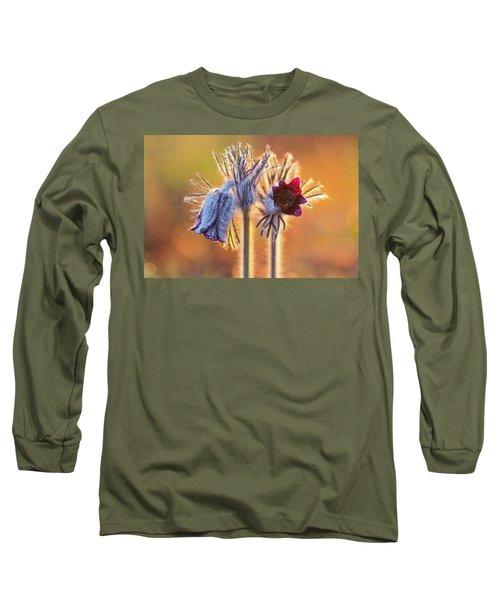 Small Pasque Flower, Pulsatilla Pratensis Nigricans Long Sleeve T-Shirt