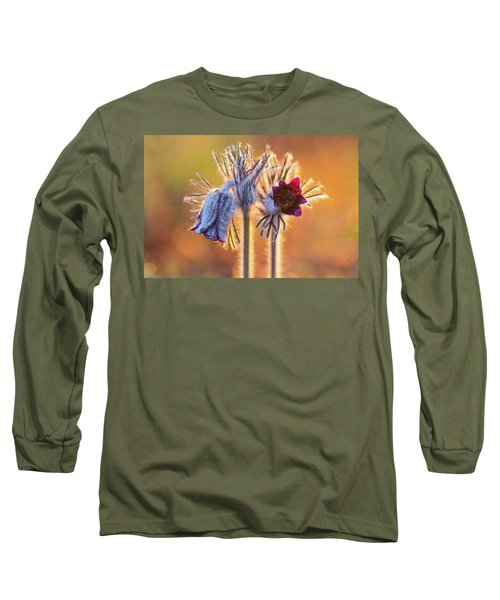 Small Pasque Flower, Pulsatilla Pratensis Nigricans Long Sleeve T-Shirt
