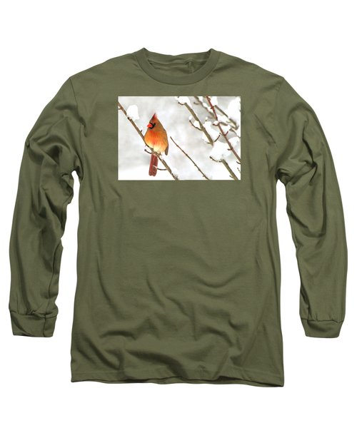 Snow Cardinal Long Sleeve T-Shirt by Marion Johnson