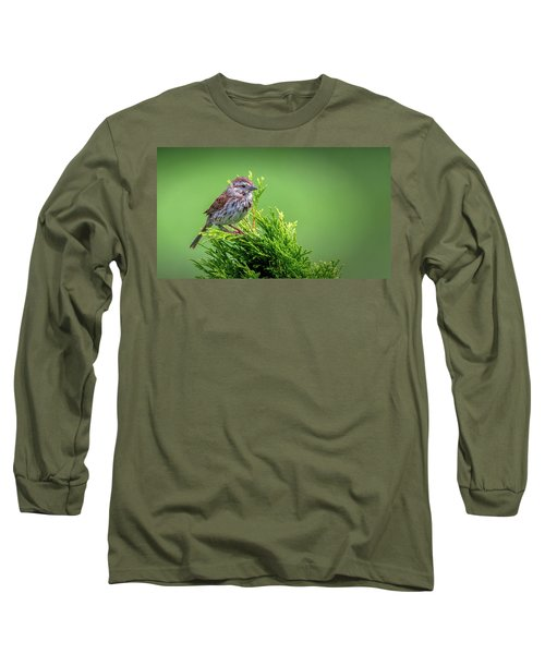 Song Sparrow Perched - Melospiza Melodia Long Sleeve T-Shirt