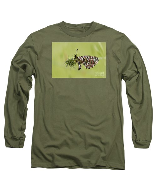 Spanish Festoon Butterfly Long Sleeve T-Shirt