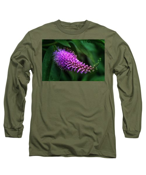 spring beautiful flowers callistemon in subtropics of Russia Long Sleeve T-Shirt