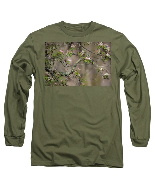 Spring Blossoms 2 Long Sleeve T-Shirt
