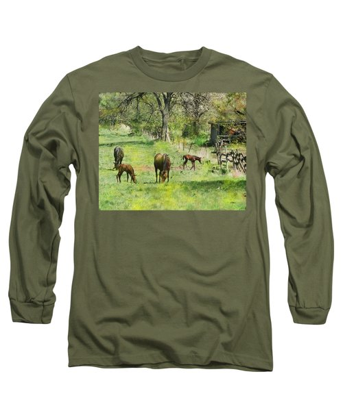 Spring Colts Long Sleeve T-Shirt