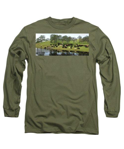 Spring Gather Long Sleeve T-Shirt