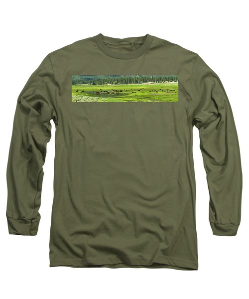 Spring Grazing Long Sleeve T-Shirt