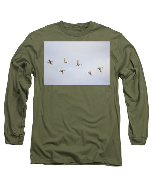 Spring Migration 3 Long Sleeve T-Shirt