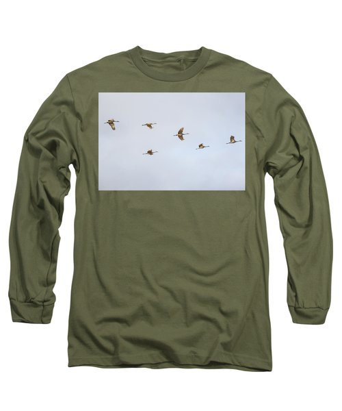 Spring Migration 4 Long Sleeve T-Shirt