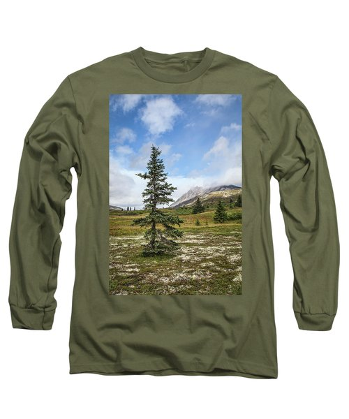 Spruce Tree In Summer Long Sleeve T-Shirt