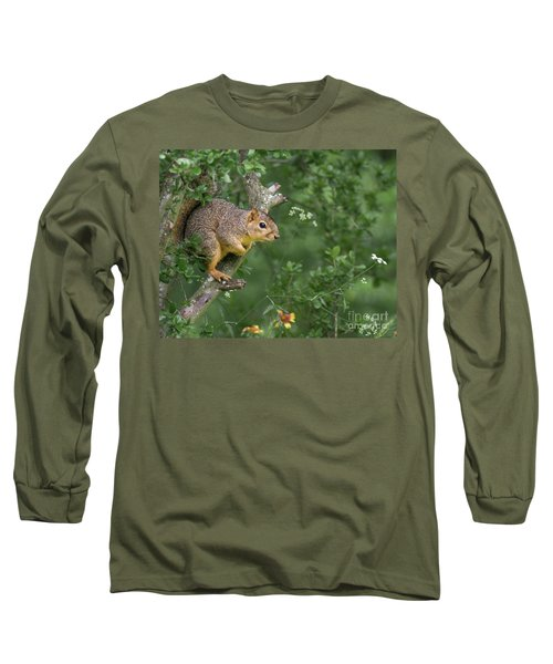 Squirrel In A Tree Long Sleeve T-Shirt