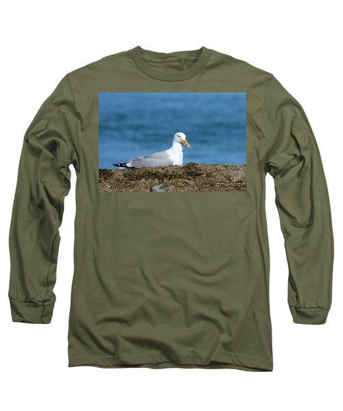 Long Sleeve T-Shirt featuring the photograph Starfish Dinner by Debbie Stahre