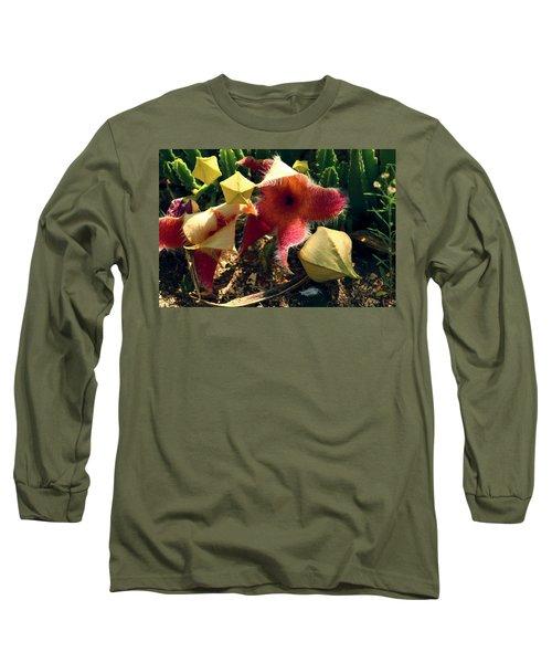 Starfish Of The Desert Long Sleeve T-Shirt