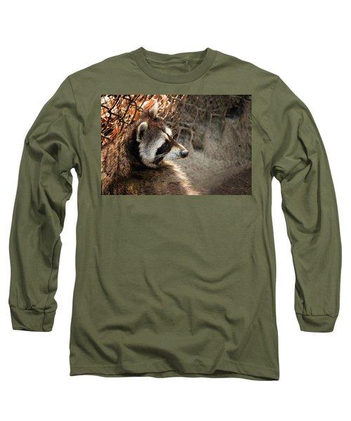 Staring Raccooon Long Sleeve T-Shirt