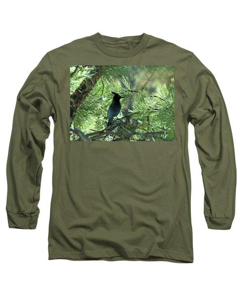 Stellarjay1 Long Sleeve T-Shirt