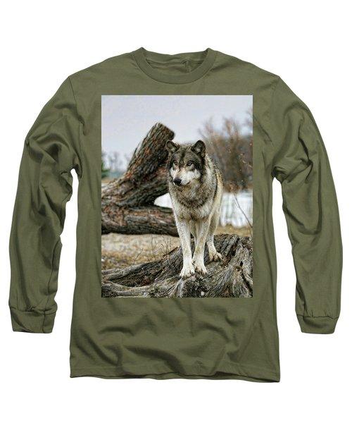 Still Wolf Long Sleeve T-Shirt