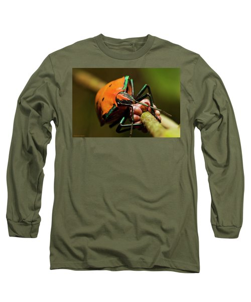 Stink Bug 666 Long Sleeve T-Shirt by Kevin Chippindall