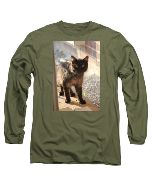 Stray Cat Long Sleeve T-Shirt