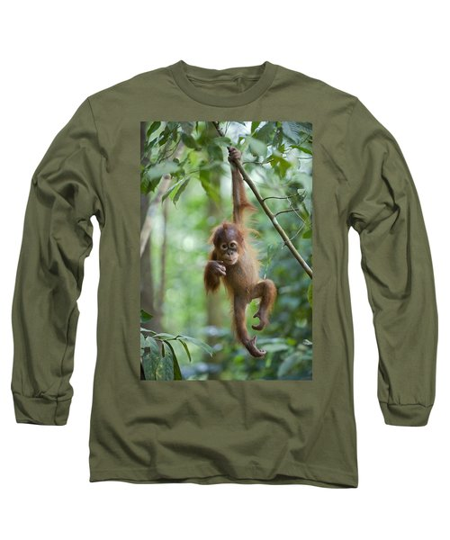 Sumatran Orangutan Pongo Abelii One Long Sleeve T-Shirt