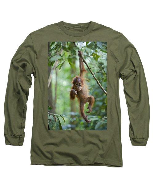 Sumatran Orangutan Pongo Abelii One Long Sleeve T-Shirt by Suzi Eszterhas