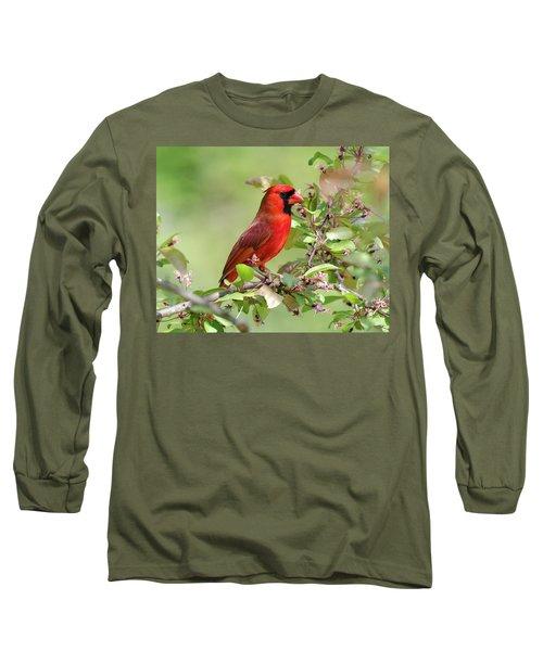 Summer Cardinal Long Sleeve T-Shirt