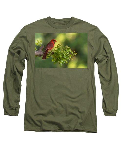 Summer Cardinal New Jersey Long Sleeve T-Shirt